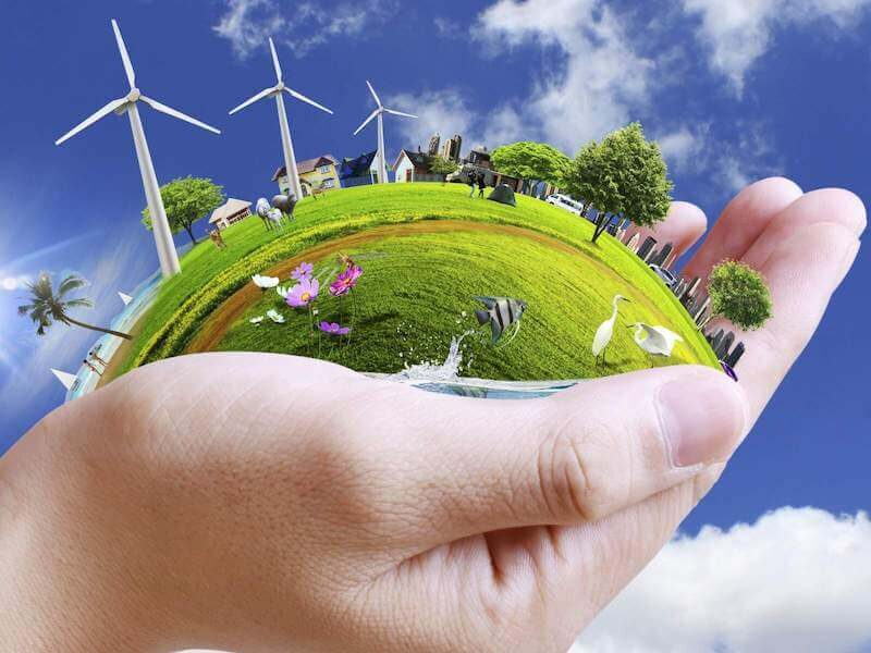 Everything You Need to Know About Environmental Sustainability